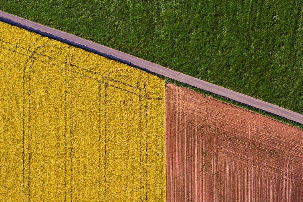 Evento Agribusiness Africa - 29 Aprile 2021